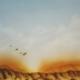 """DZ41 – """"Ohne Titel"""" 30×42 I Airbrush (2007)"""