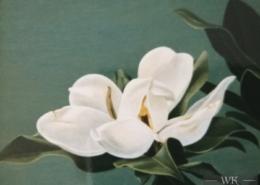 """W26 – """"Magnolienblüte"""" 30×24 I Öl auf Leinwand (1998)"""